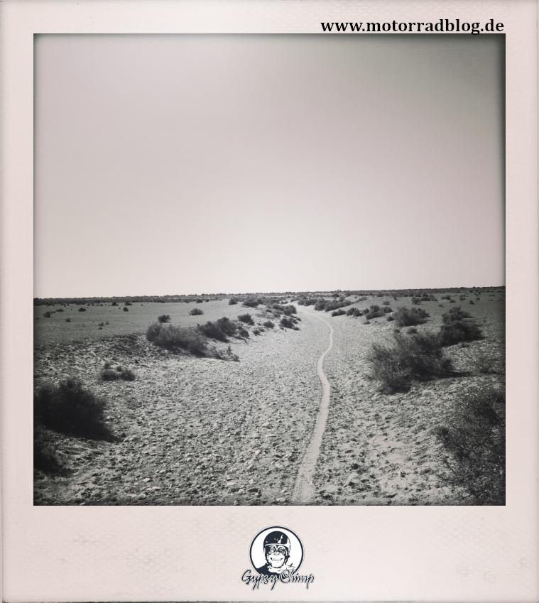 [Hier ist eigentlich ein Bild: Eine sandige Piste in der nordafrikanischen Steppe, auf der die Spur eines Motorrads zu sehen ist.]