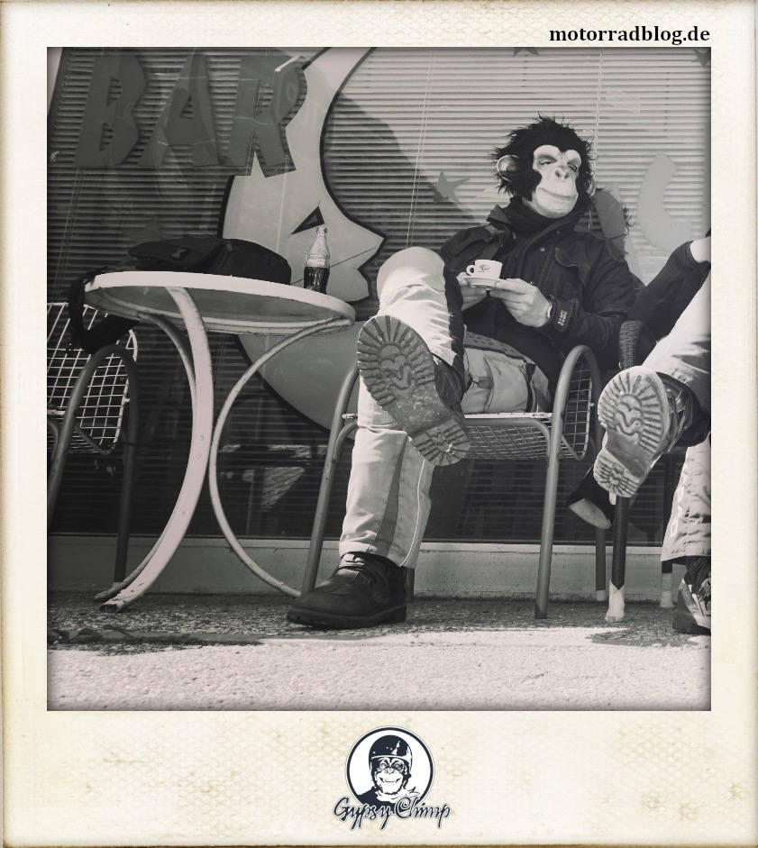 [Bild: Gypsy Chimp | motorradblog.de]